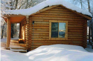 cabin in snow